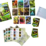 Ecosystem Board Game Contents